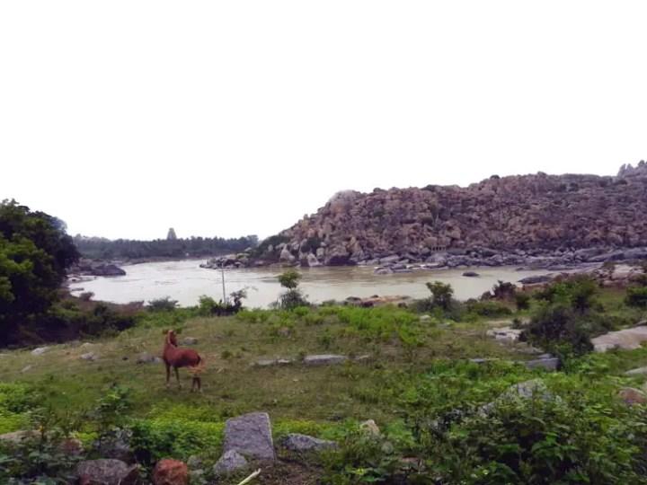 Hampi_RiversidePath_HorseAndTemple - Magical sights of Hampi