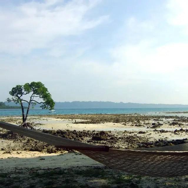 Andamans-Havelock-Empty hammock