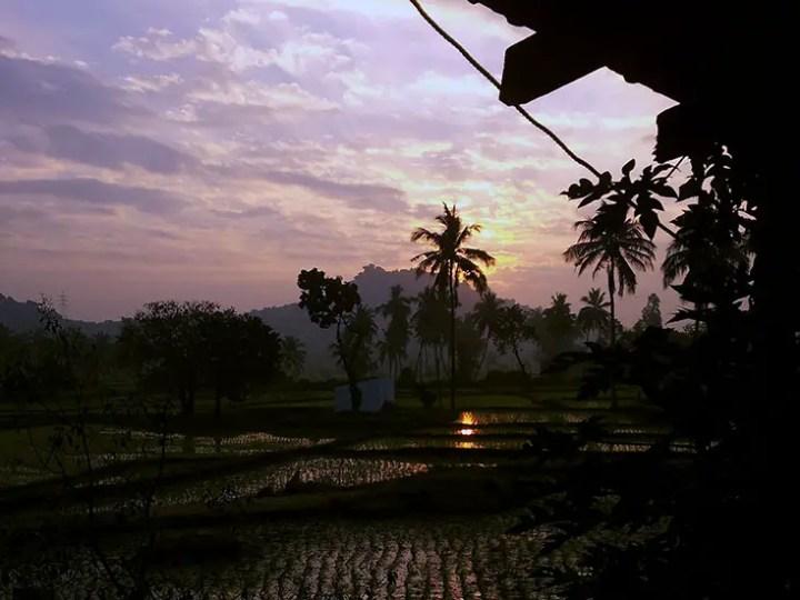 Sunrise over the rice fields in Hampi, Karnataka, India - travel photos