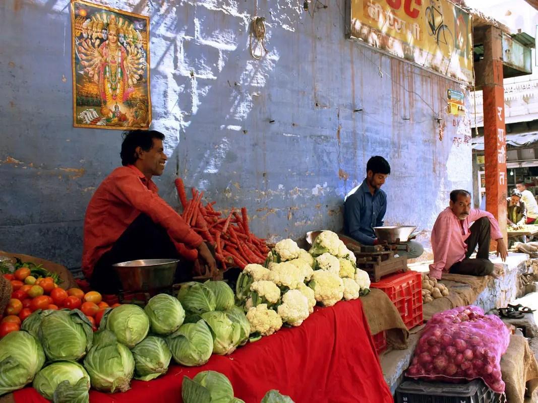 Vegetarianism - Jodhpur vendor - tips on turning vegetarian