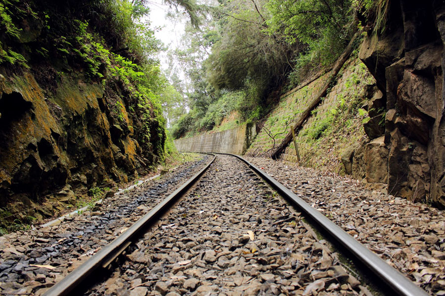 Coonoor - Wellington station tracks