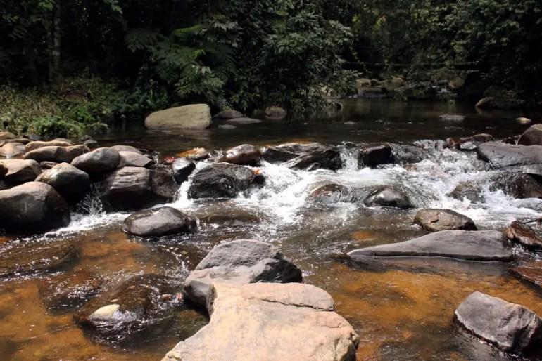 Coorg - Chomakund stream upstream