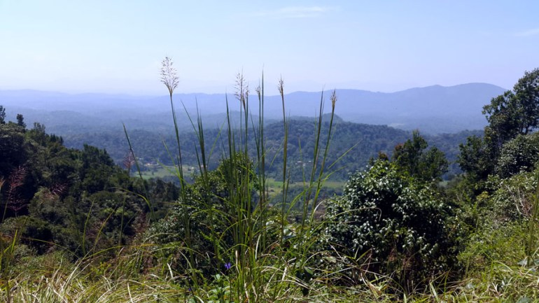 Coorg - Hill view from Taj shortcut - mountain holiday destinations in India