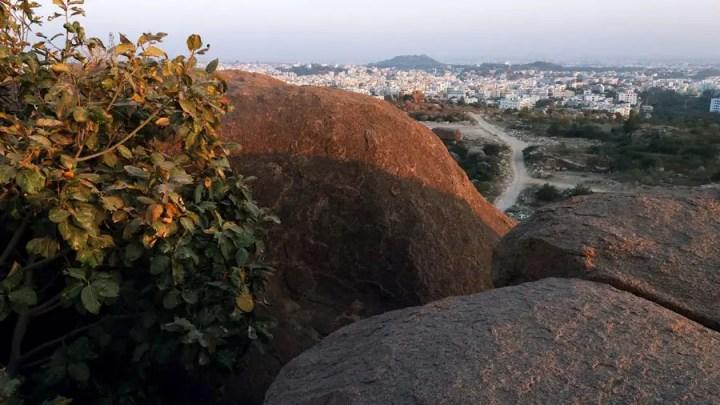 Fakhruddingutta - Rock and bush towards Manikonda