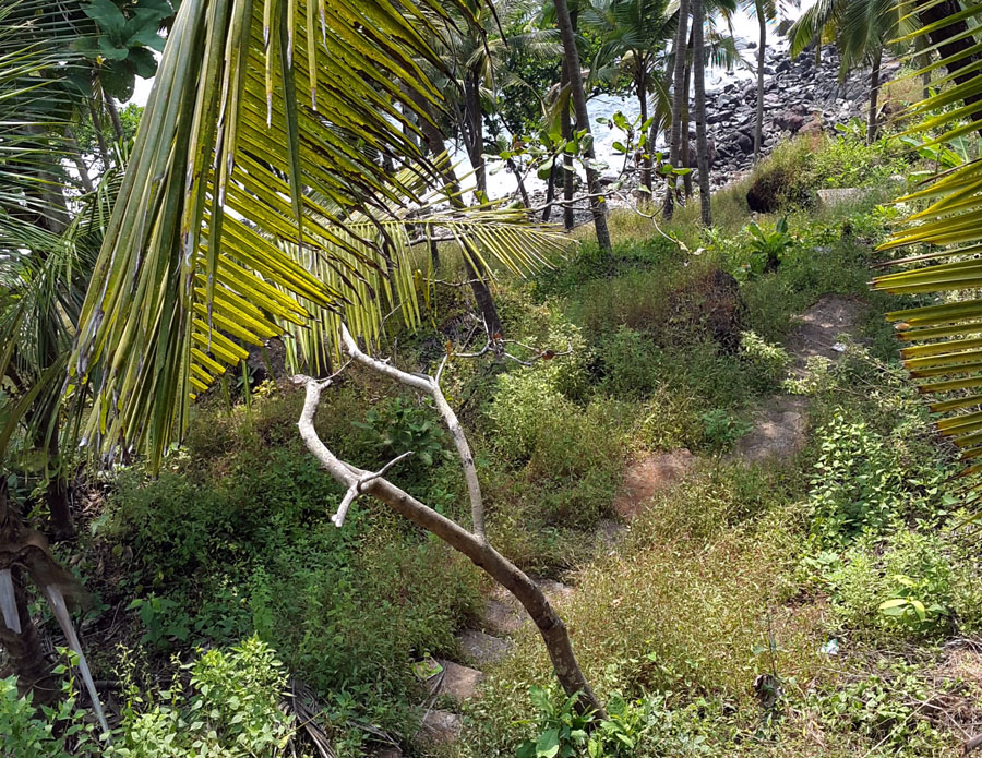 Agonda - Cabo de Rama - Path down - perfect base for a Goa trip