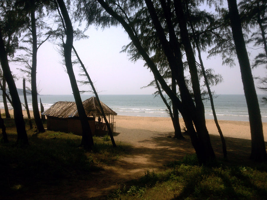 Agonda - nearby beaches -Galgibaga entrance - perfect base for a Goa trip