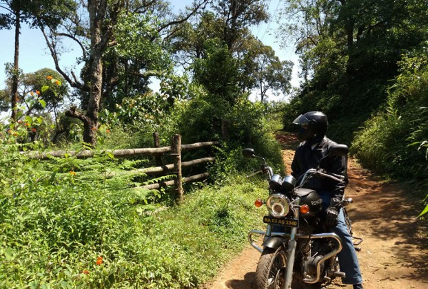 Motorcycle on forest path in Madikeri, Coorg, India