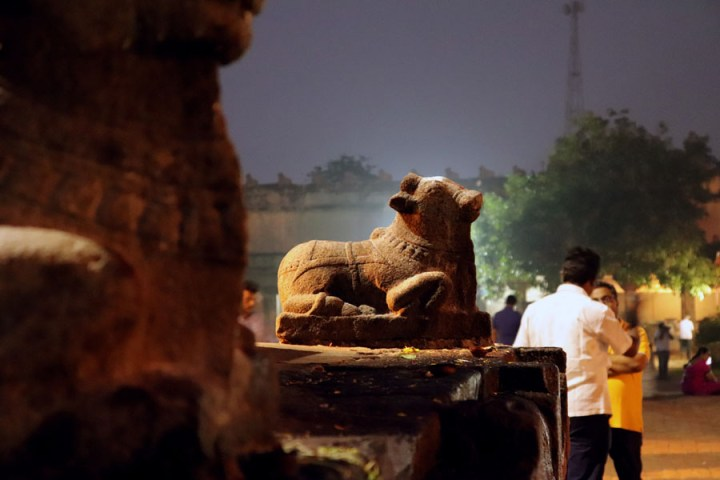 Thanjavur - Small nandi - Temples of Madurai and Thanjavur
