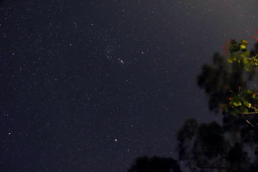 Valparai - stars.jpg - In the shadow of elephants in Valparai