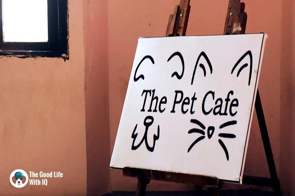 Signboard - The Pet Café: Hyderabad's new pawty hotspot