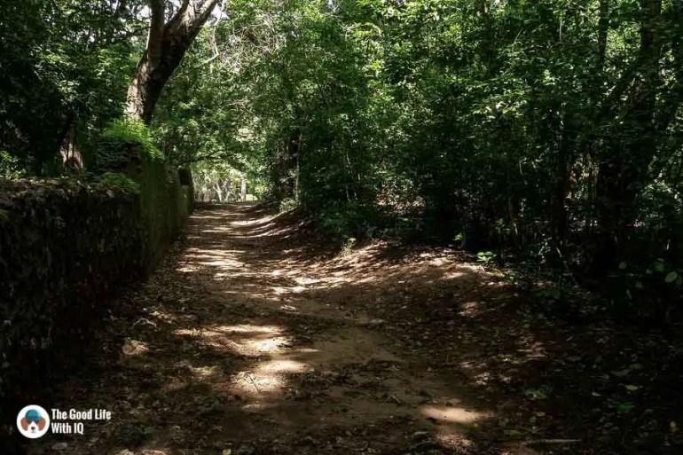 Town wall - Gedi ruins, Malindi