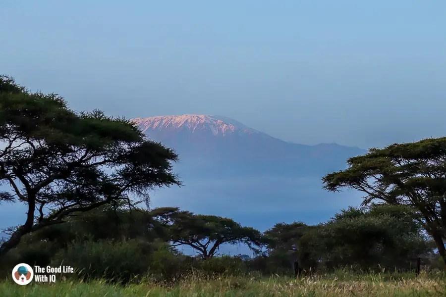 Kenya safari - Amboseli - Kilimanjaro