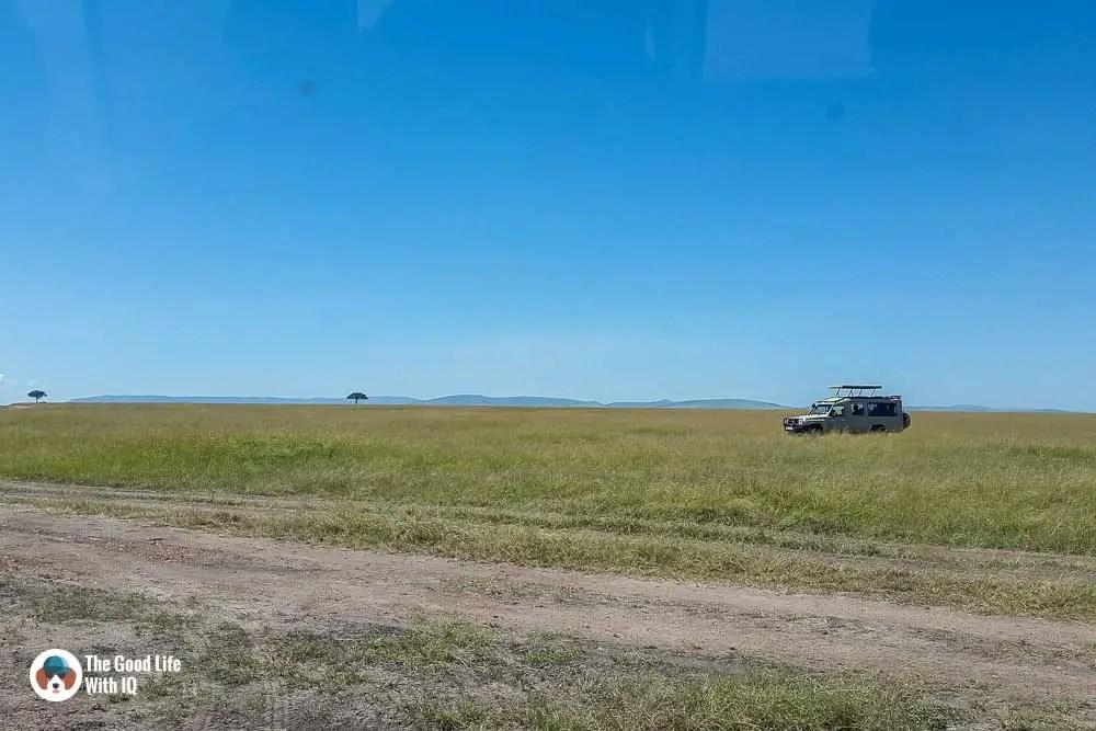Kenya safari - Masai Mara - Land cruiser and grasss