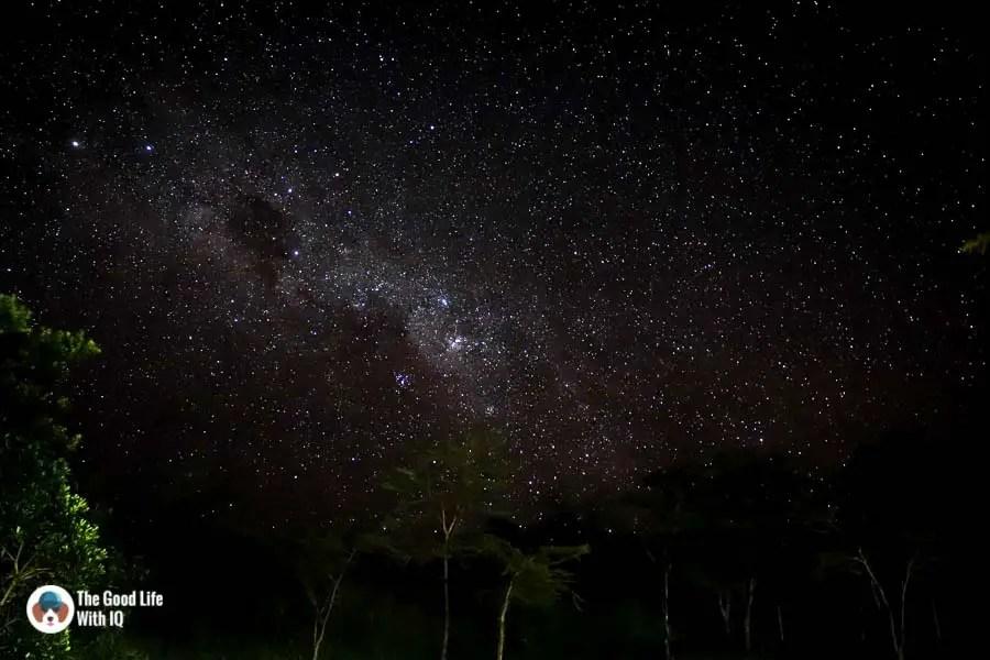 Kenya safari - Masai Mara - Night sky