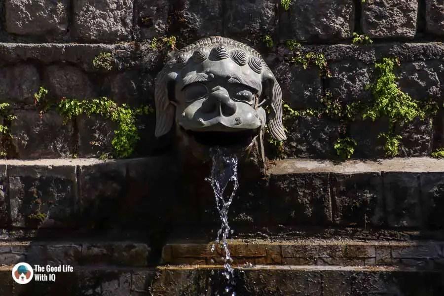 Gargoyle at Norbulingka, Dharamshala