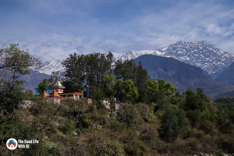 Photo diary: Snow-capped mountains and Tibetan art in Dharamshala