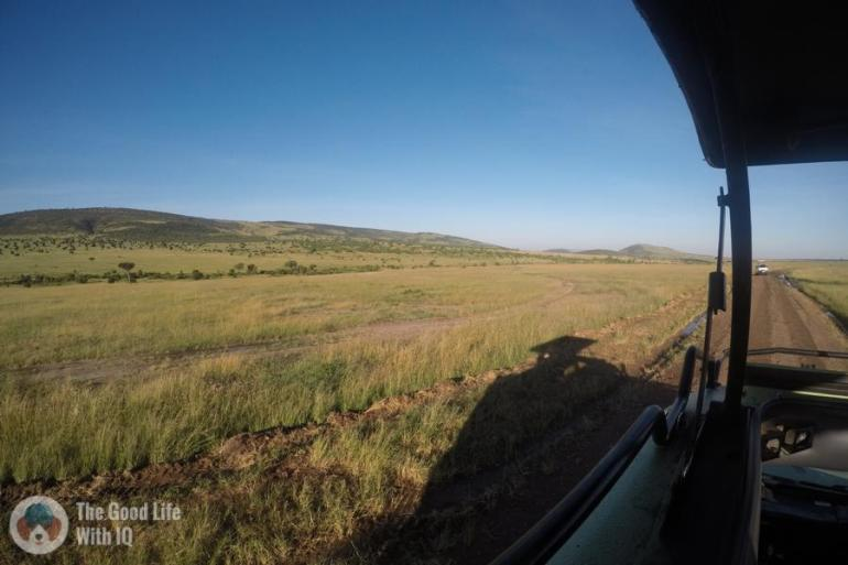 Masai Mara grasslands, Kenya