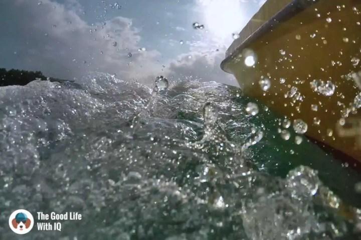 Snorkelling at Mangrove Point, Nusa Ceningan