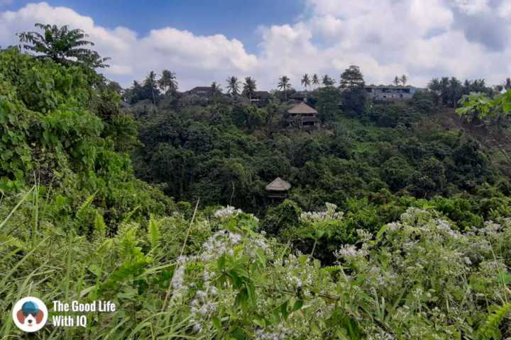 Pavilion, Campuhan trail - Three days in Ubud, Bali