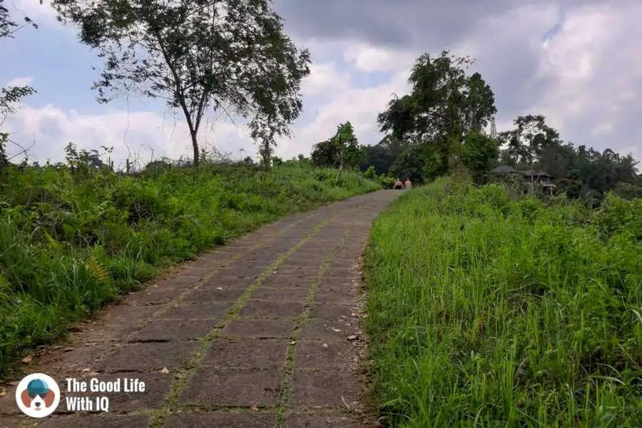 Campuhan trail - 3 days in Ubud, Bali