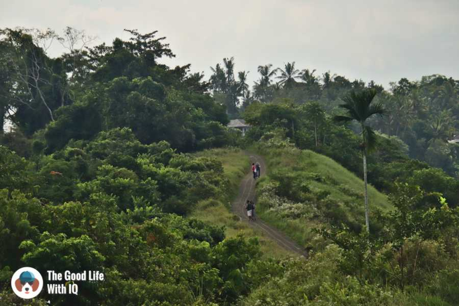 Campuhan trail, Ubud, Bali