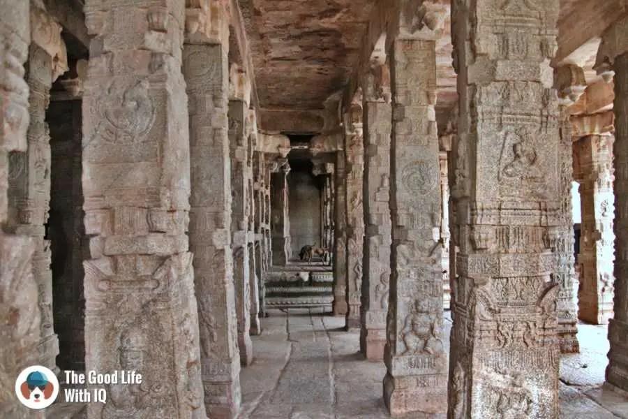Dogs and pillars - Lepakshi temple