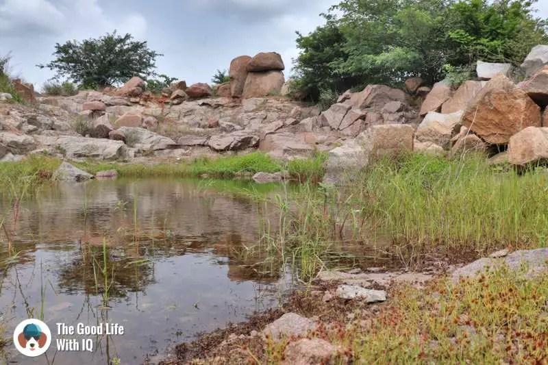 Rocky pond, Hyderabad