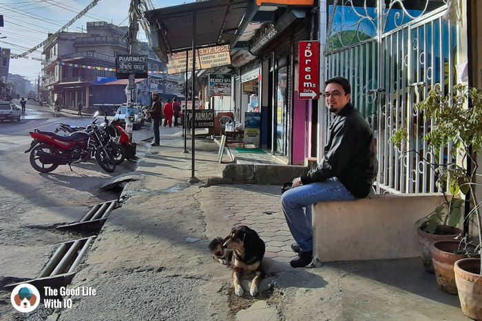 Doggie in Pokhara
