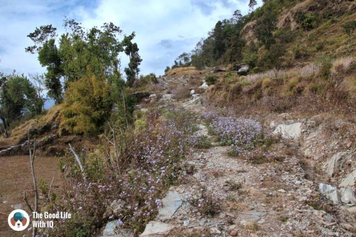 Kaskikot-Deurali trail, Pokhara