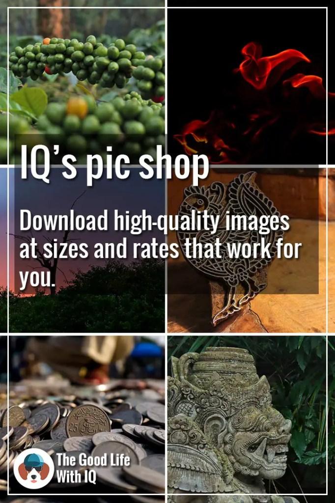 Pinterest thumbnail - IQ's pic shop