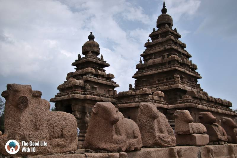 Nandis, Shore Temple, Mahabalipuram - 3 day trip to Pondicherry