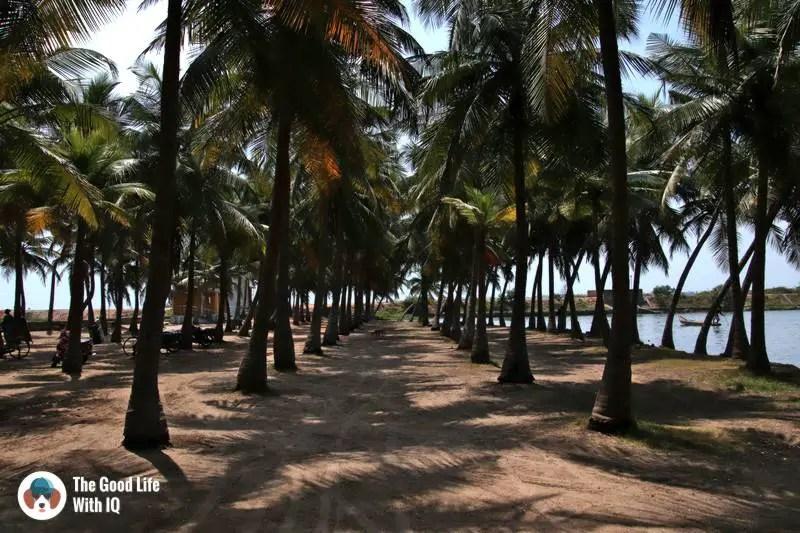Chinna Veerampattinam beach parking  - 3 day trip to Pondicherry