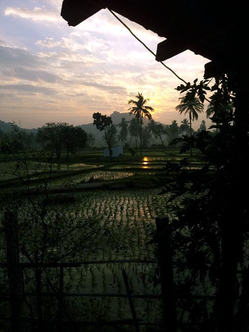 Sunrise at Gowri Resort