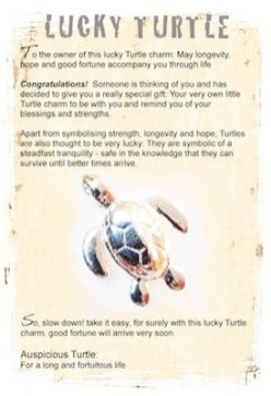Lucky turtle information