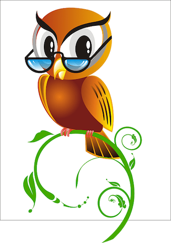 Owl symbolises wisdom