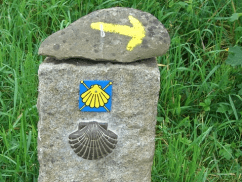 Camino markings with shell