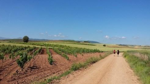 Walking el Camino