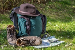 Experience the Camino de Santiago journey
