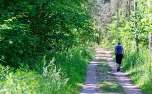 Walker on Camino de Santiago Jakobsweg
