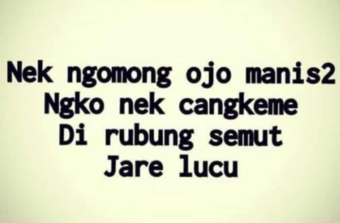 Kata Kata Lucu Bahasa Jawa