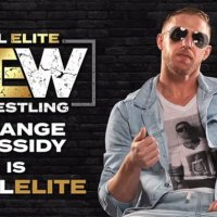 DEADSPIN: All Elite Wrestling's Newest Signing Is As Divisive As Wrestlers Get