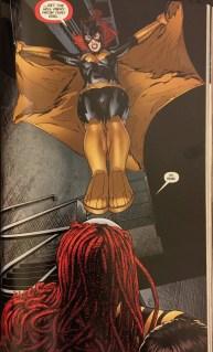 Batgirl vs Ragdoll