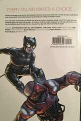 Catwoman,Volume 4: The One You Love Review
