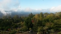 Mt Tomah, go there!