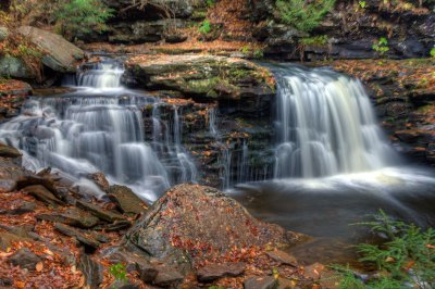 Cayuga Falls at Ricketts Glen State Park.