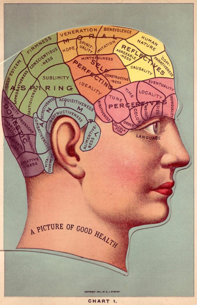 4 Vintage Phrenology Head Diagrams