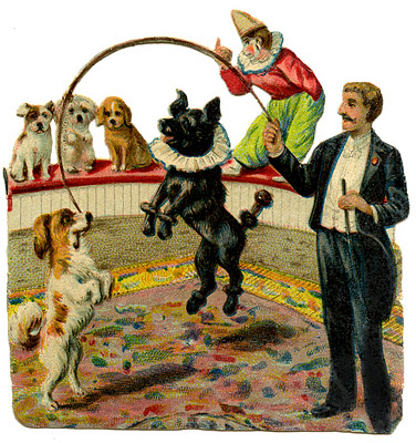 Vintage Graphic Circus Dogs The Graphics Fairy
