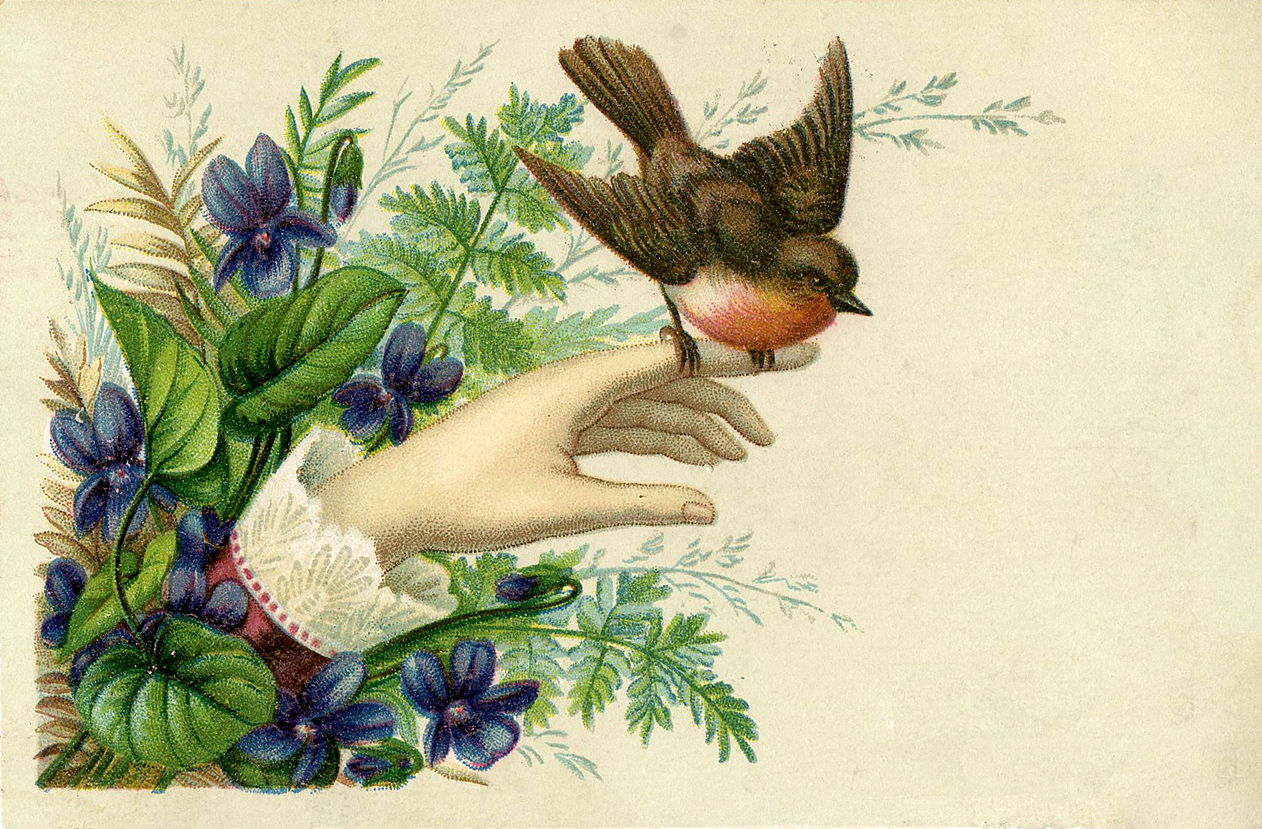 Bird Hand Victorian GraphicsFairy1 The Graphics Fairy