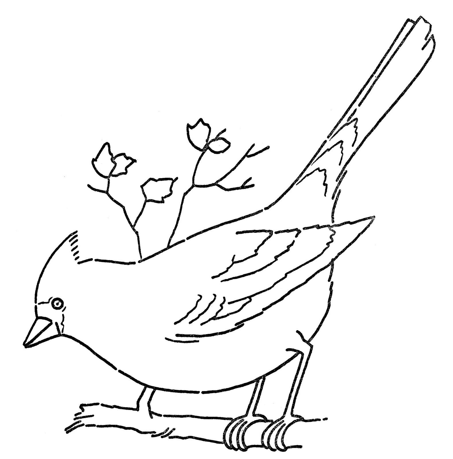 Line Art Bird Cardinal Graphicsfairy1