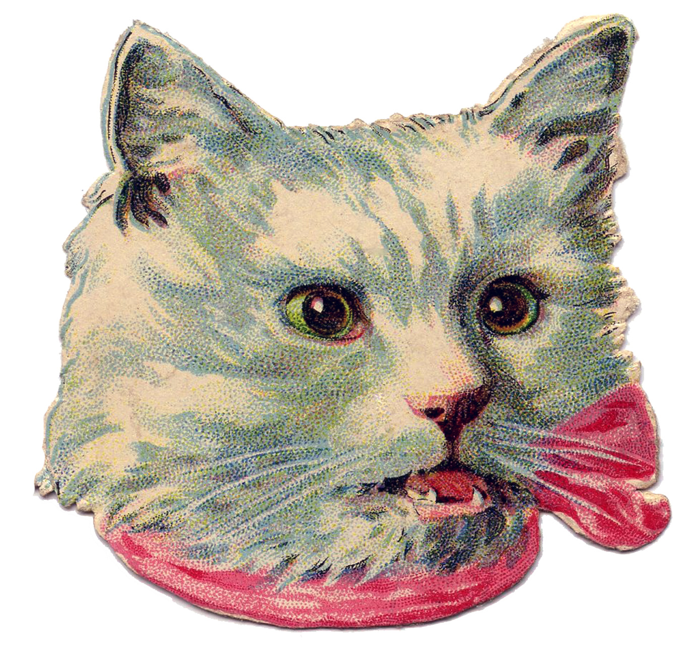 Vintage Image White Kitty Cat With Bow The Graphics Fairy